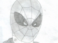 civil_spider