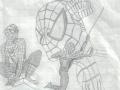 spider_mix