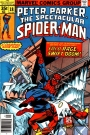 Peter Parker, The Spectacular Spider-Man #18