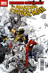 The Amazing Spider-Man #555