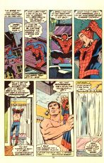 Peter Parker, The Spectacular Spider-Man #22