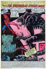 Peter Parker, The Spectacular Spider-Man #33